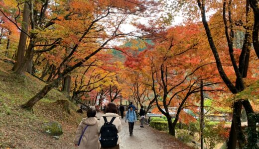 紅葉狩りin香嵐渓
